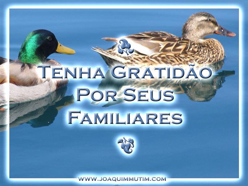 Tenha gratidão por seus familiares