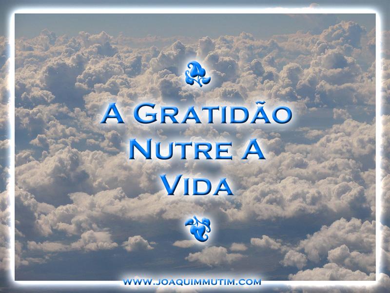 a gratidão nutre a vida