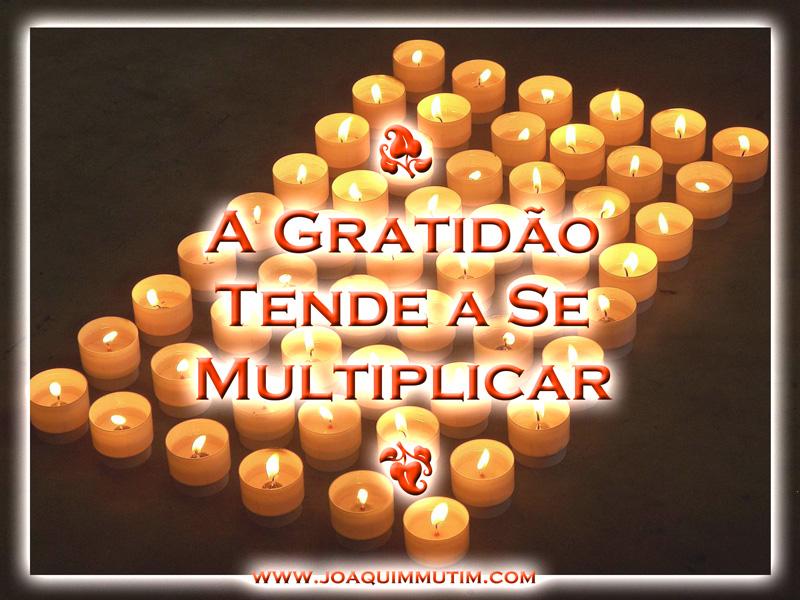 a gratidão tende a se multiplicar