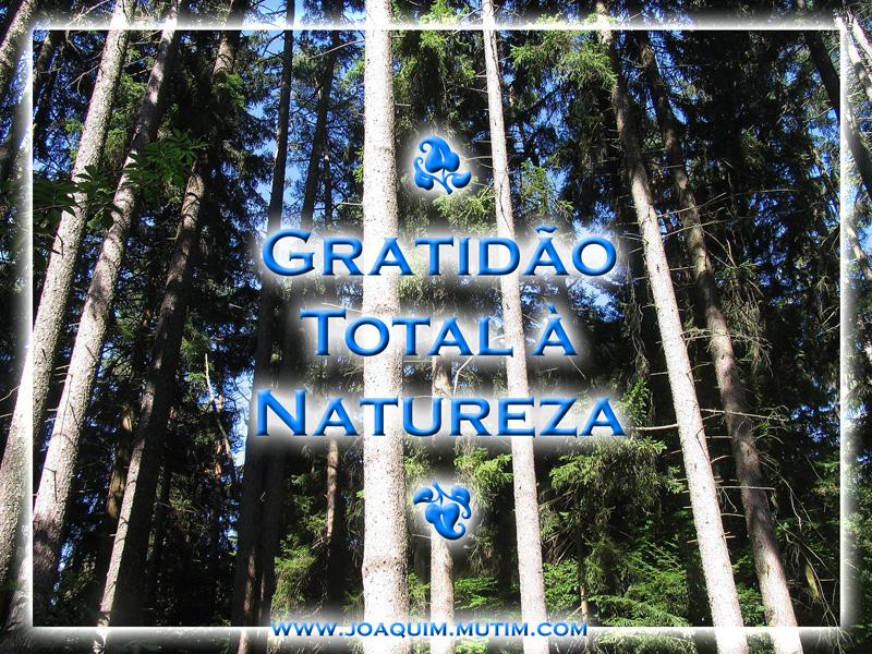gratidão total à natureza