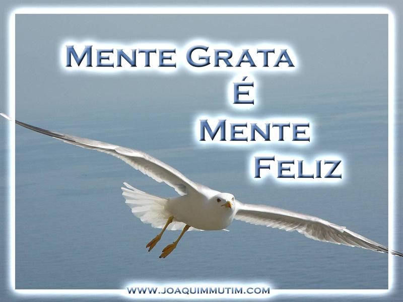 mente grata é mente feliz